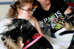 Temple Street Pet Therapy Taxback Group